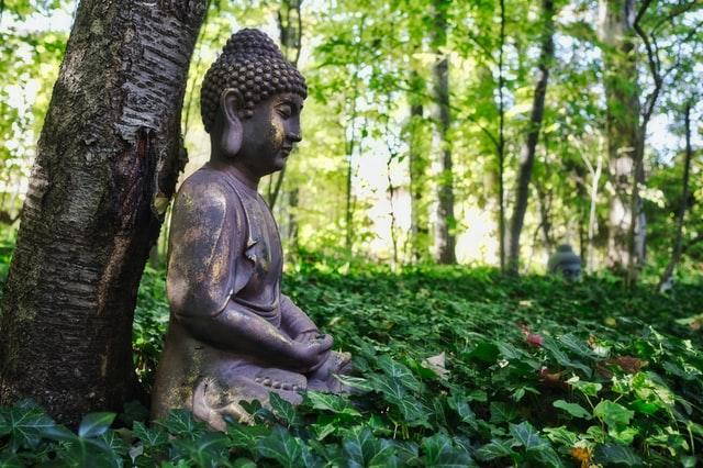 ¿Para qué cantamos Mantras en Yoga?
